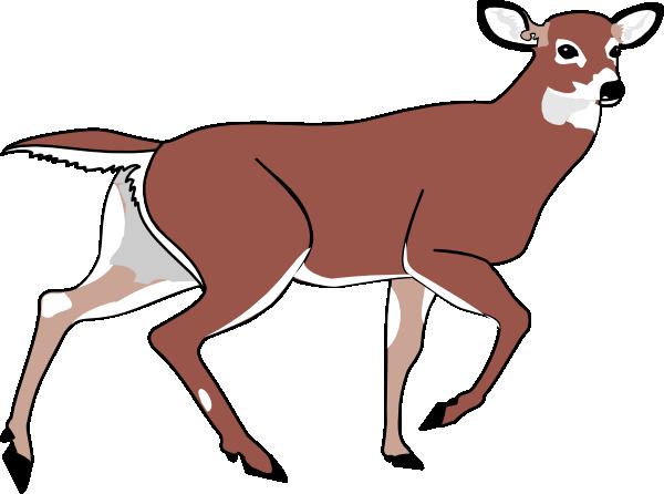 free clipart cartoon deer - photo #21