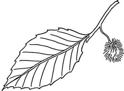 Leaf Clip Art Outline