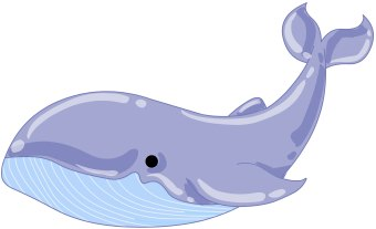 Humpback whale clipart - photo#23
