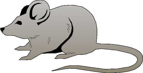Mouse clipart | Coloring Pages To Print