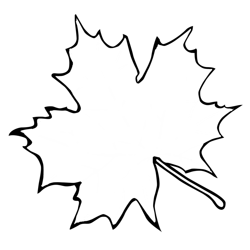 Leaf Outline
