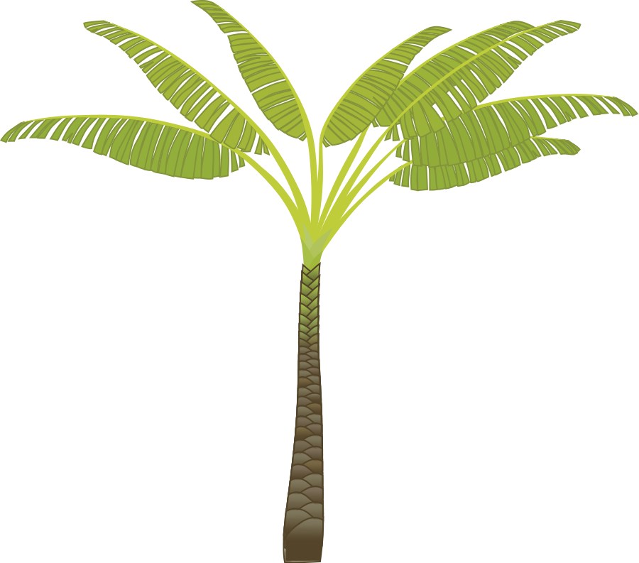 palm tree photos cliparts co free palm tree vector graphics free palm tree vector illustrator