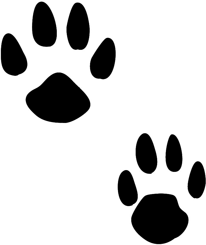 tiger tracks clip art - photo #5