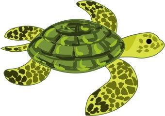 Hawaiian Sea Turtle Clip Art Turtle Clip clipart