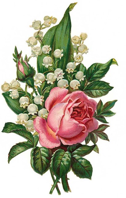 Lily Of The Valley Clip Art - Cliparts.co