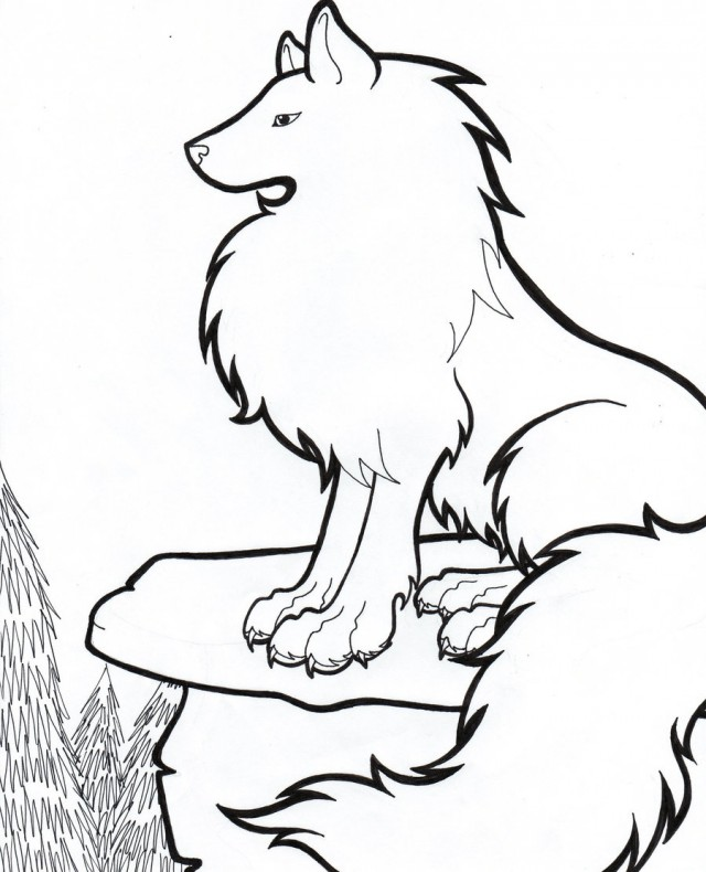 Arctic Wolf Drawing ClipArt Best 120126 Arctic Wolf Coloring Pages