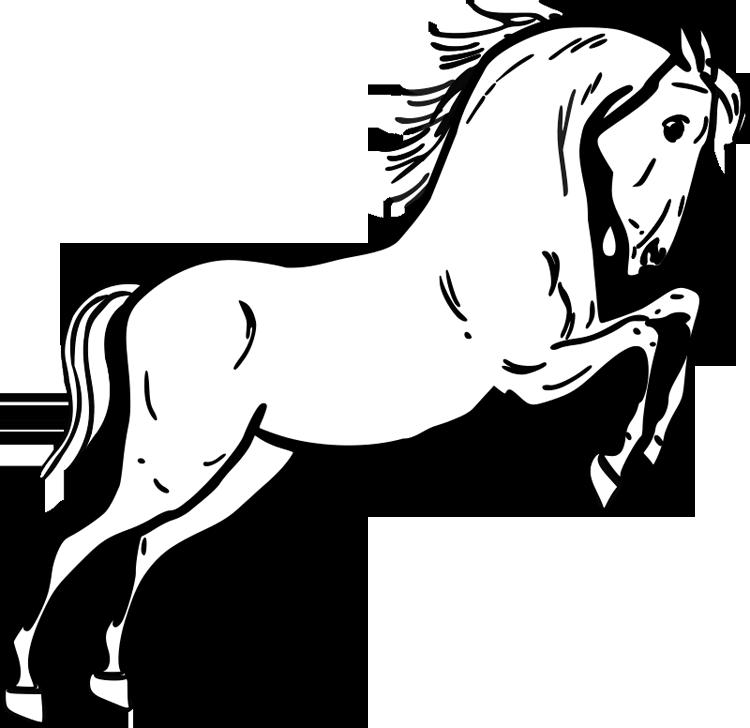 Free Horse Head Cartoon, Download Free Clip Art, Free Clip Art on ...   728x750