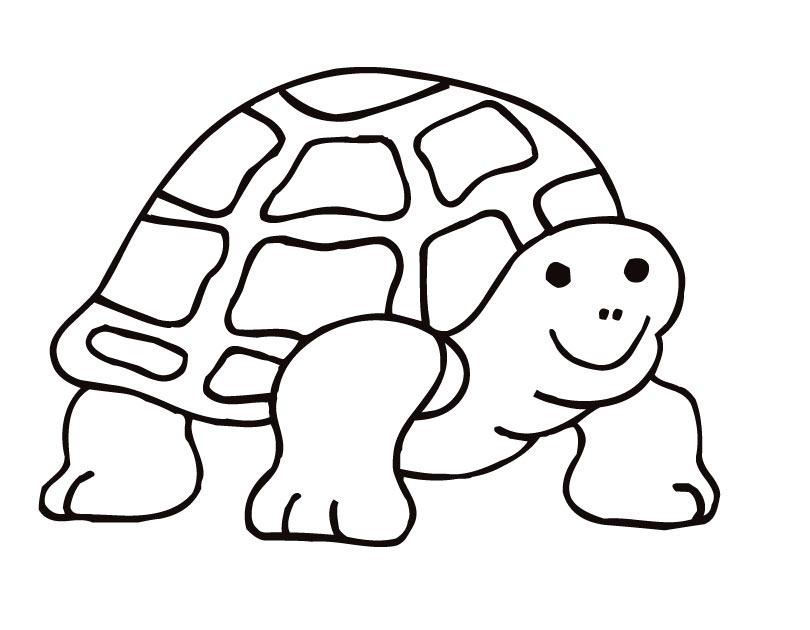Sea Turtle Outline Clipartsco