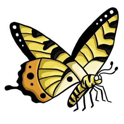 24 FREE Butterfly Clip Art Drawings and Colorful Images