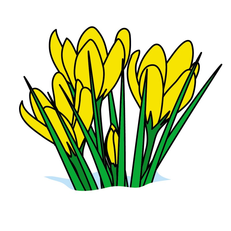 Spring Flowers Clipart Cliparts Co