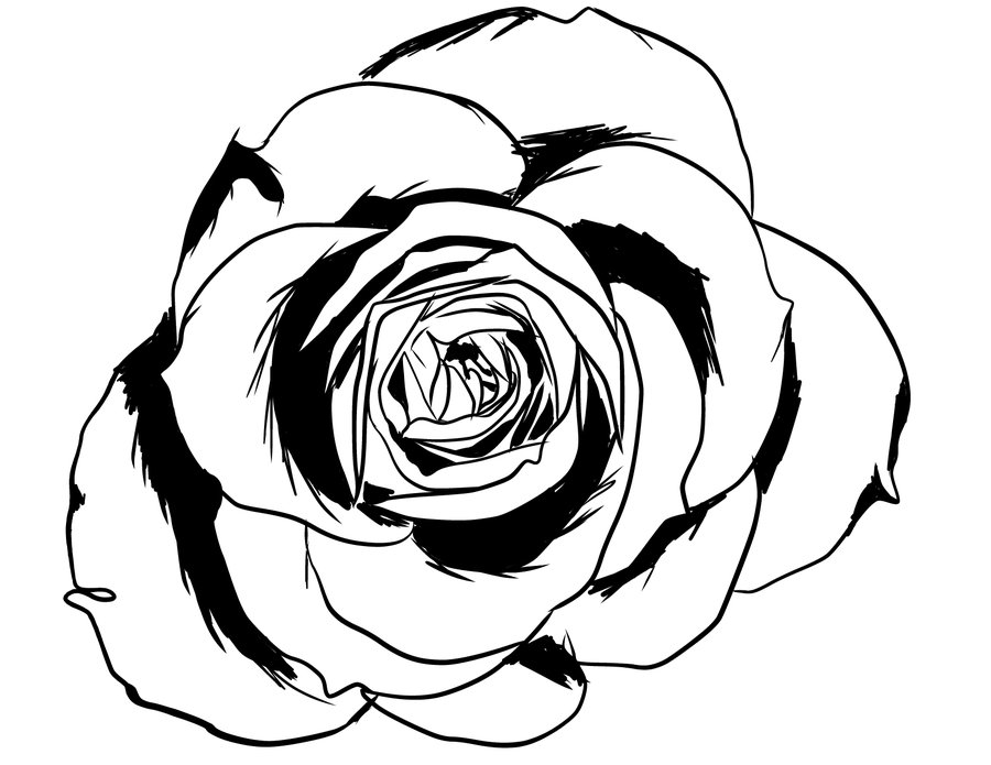 line of roses clipart - photo #38
