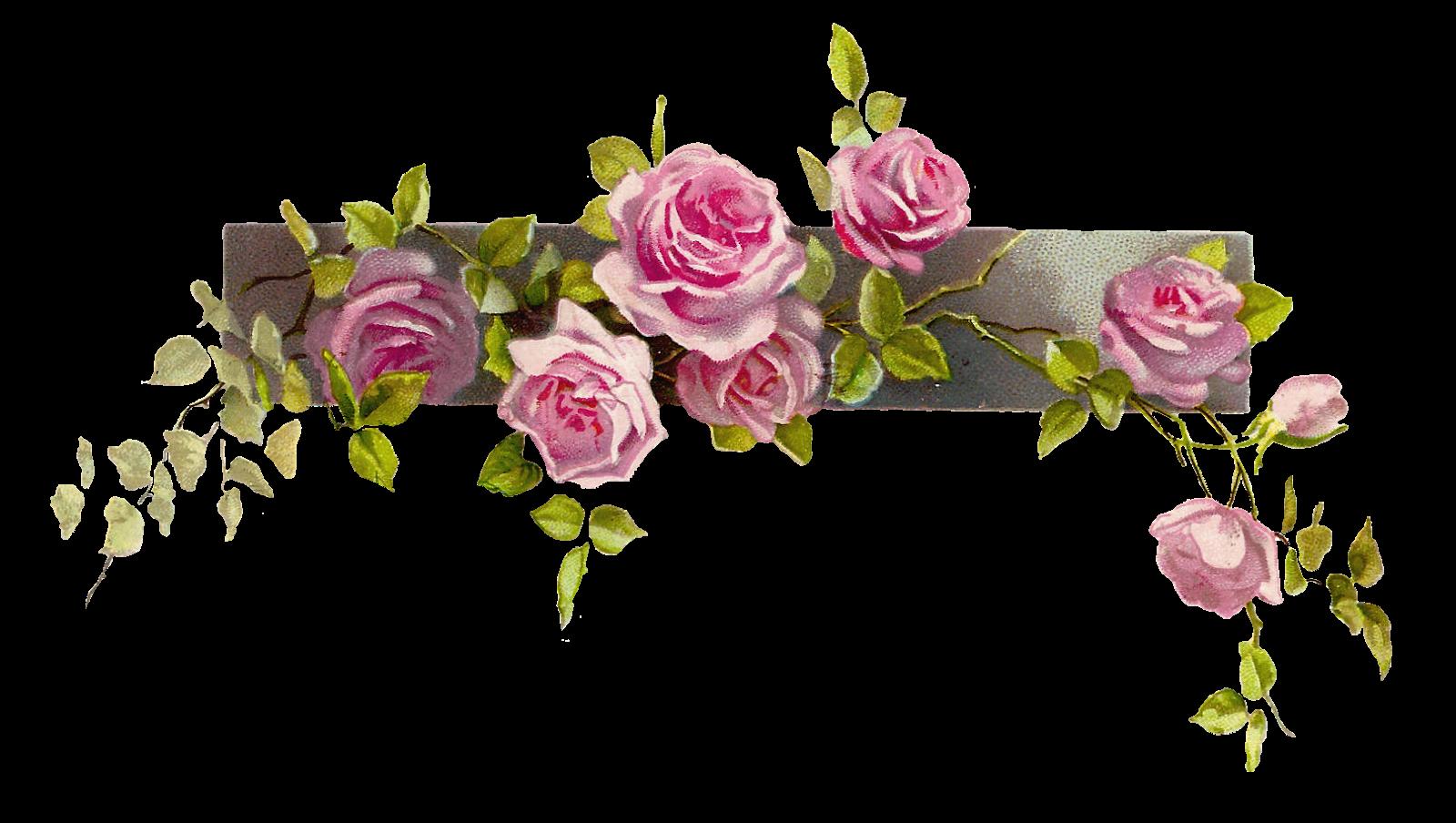 Vintage Flower Border - Cliparts.co