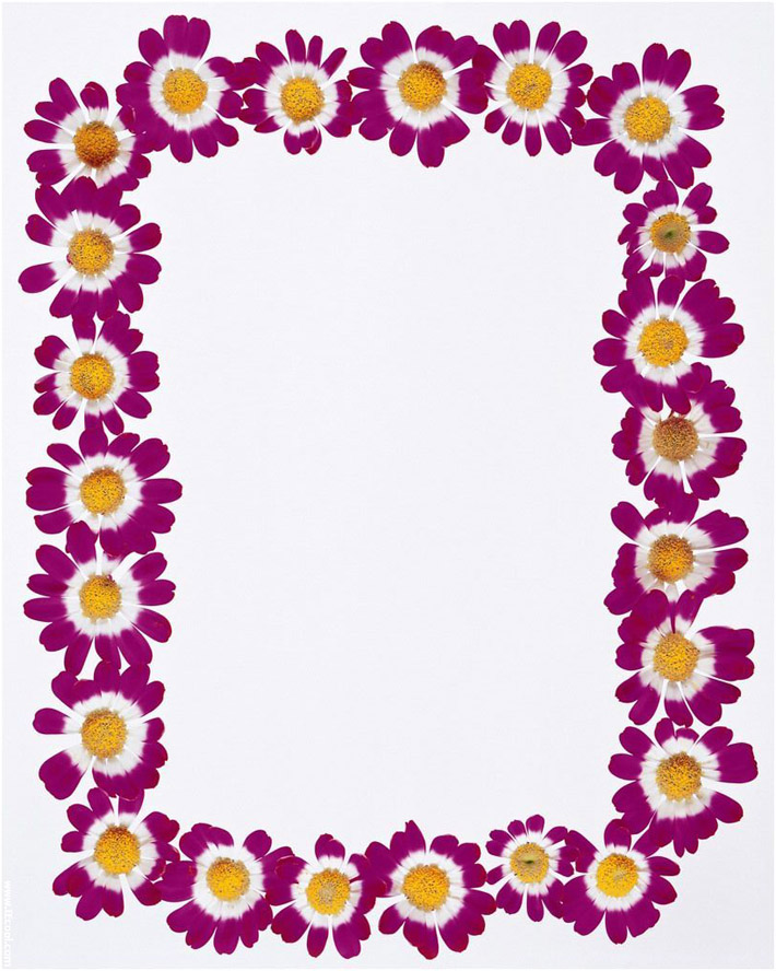 Spring Borders Clip Art Free
