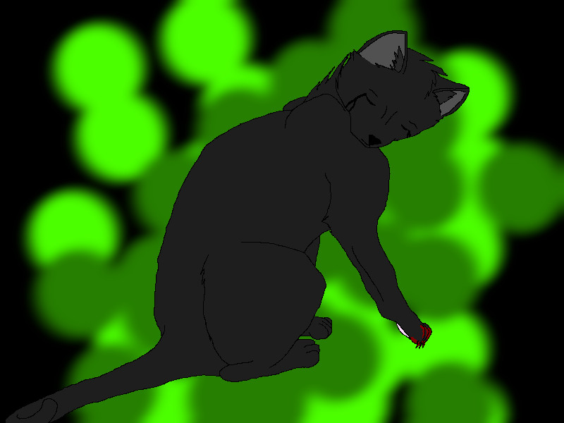 Hollyleaf- It's not fair. by lolaflyingpig on deviantART