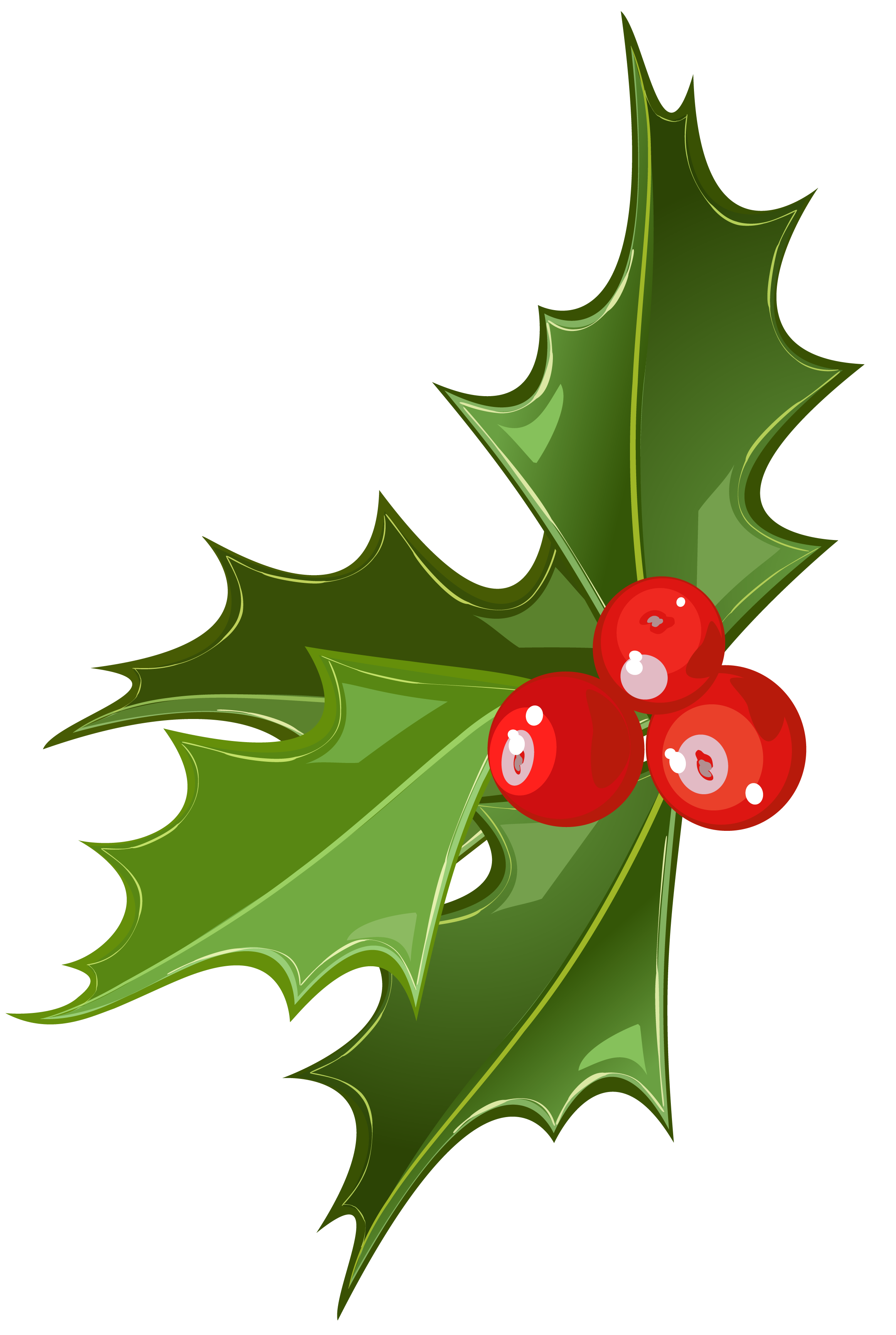 free xmas clipart holly - photo #34