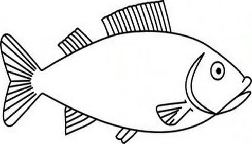 Bass Fish Outline Clip Art Clipart Panda Free Clipart Images