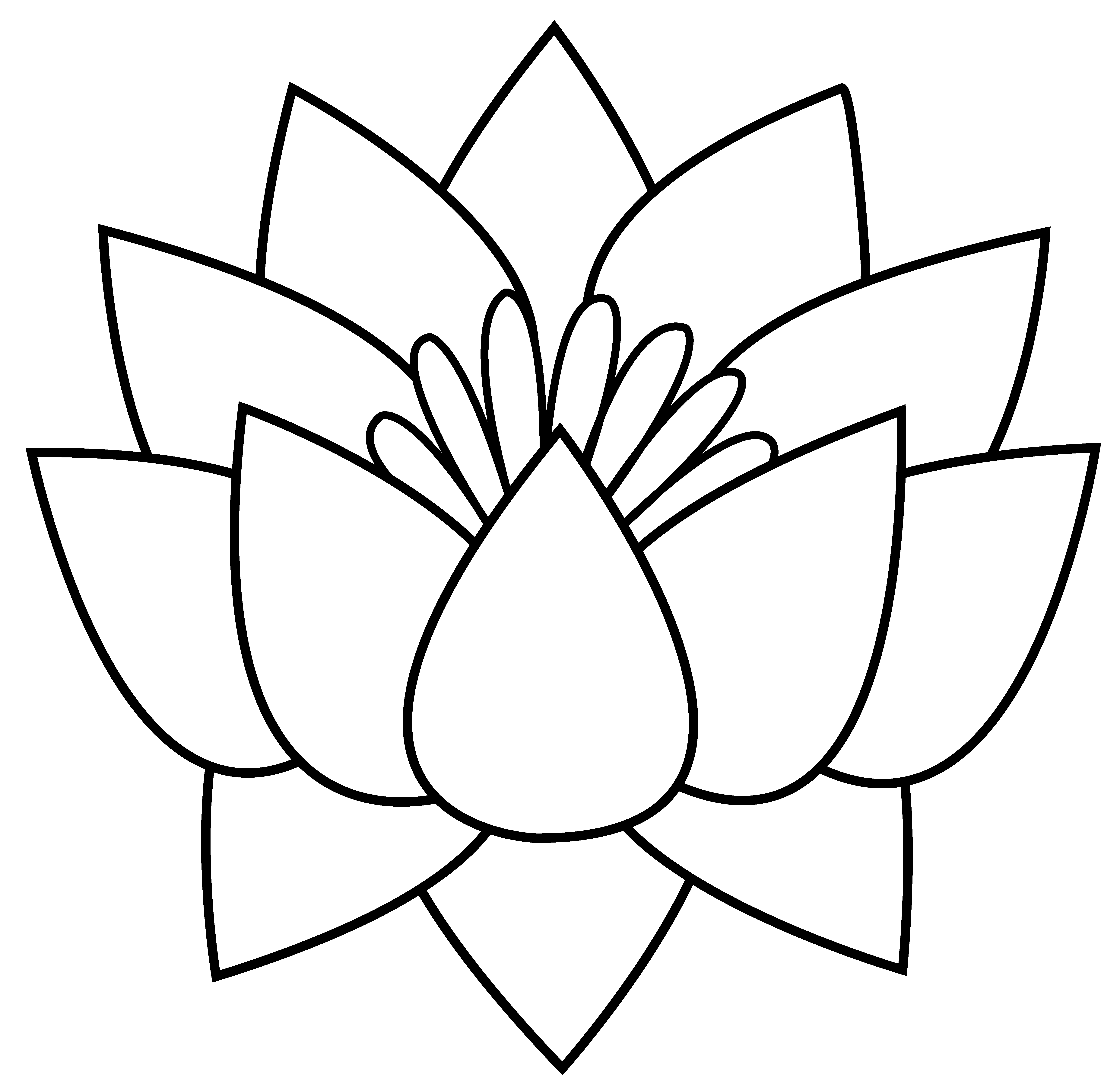 Flower Outline Drawing : Lotus flower line drawing cliparts