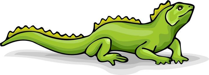 Clipart Of An Iguana