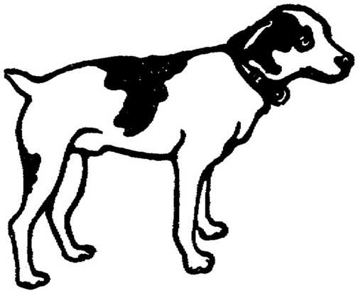 Black white dogs Graphics and Animated Gifs