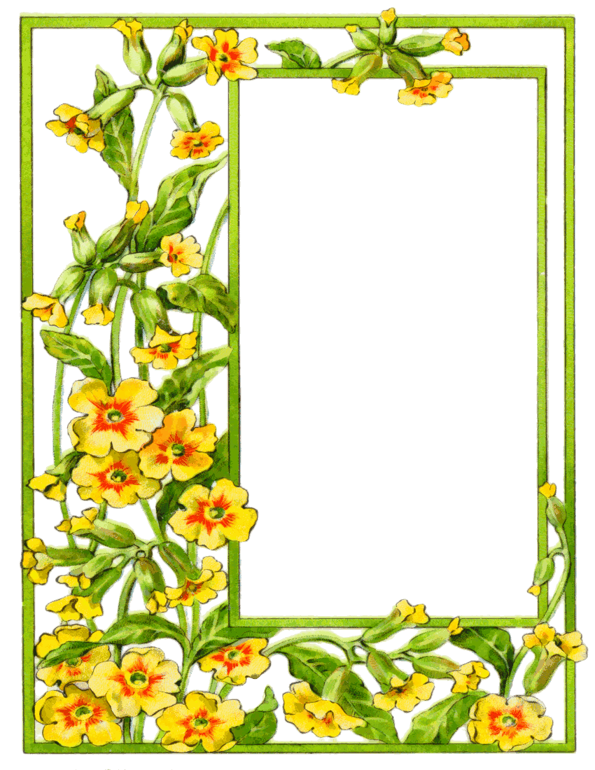 Flower Frame Clip Art - Cliparts.co