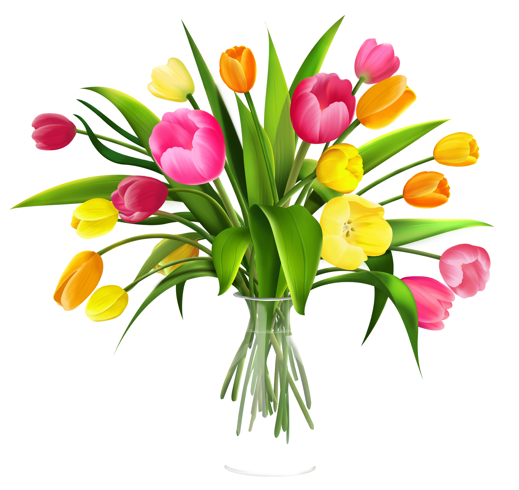 Clip Art Tulips - Cliparts.co