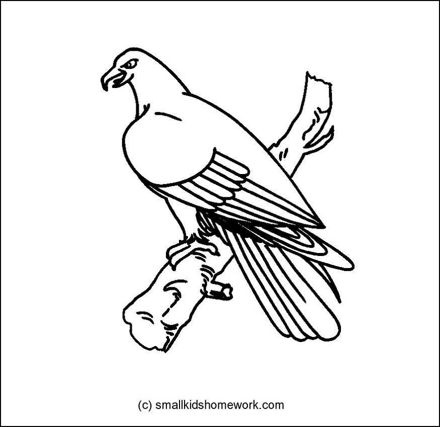 ducks tattoos coloring pages - photo#14
