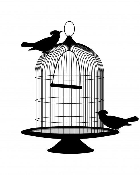 Birds Vintage Birdcage Clipart Free Stock Photo - Public