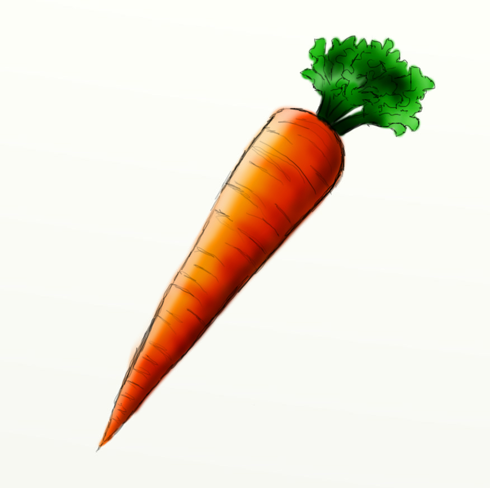 Pictures Of Carrots - ClipArt Best
