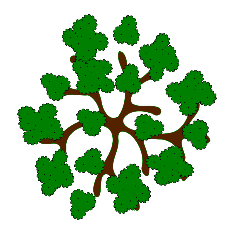 tree-14a.png