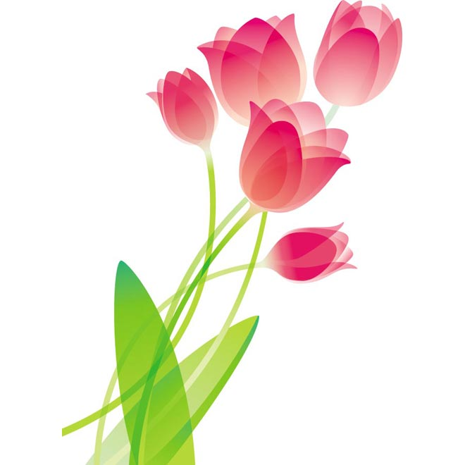 Pink glossy tulip flower bouquet vector art illustration - Free ...