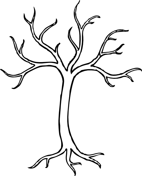 Dogwood tree drawing for Drawing websites that you can draw on