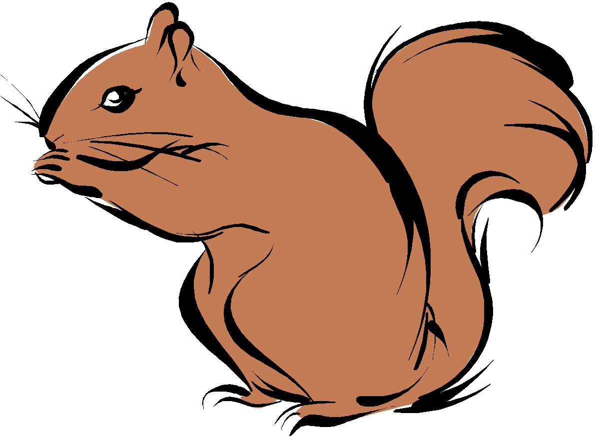 Squirrel With Acorn Clipart Photos | World Of Pictures
