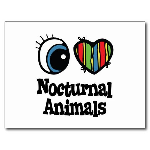 Nocturnal Animals Postcards u0026 Postcard Template Designs