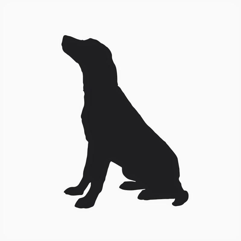 Walking Dog Profile