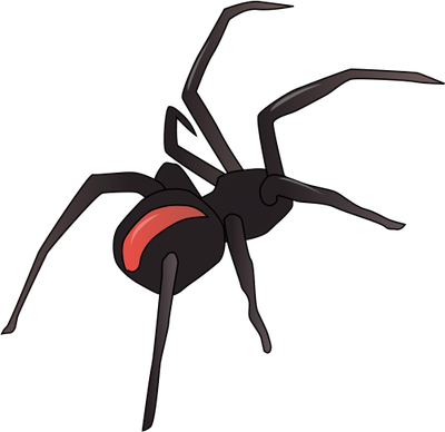 Spider Vector - Cliparts.co