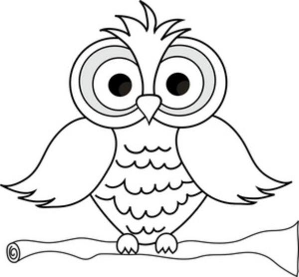 Outline Of An Owl