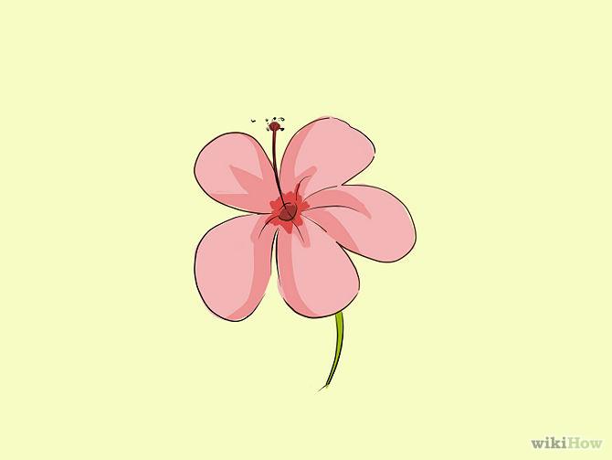 Flower cartoons for Drawings of cartoon flowers