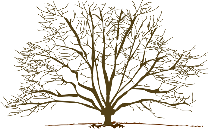 Winter Tree - ClipArt Best - ClipArt Best