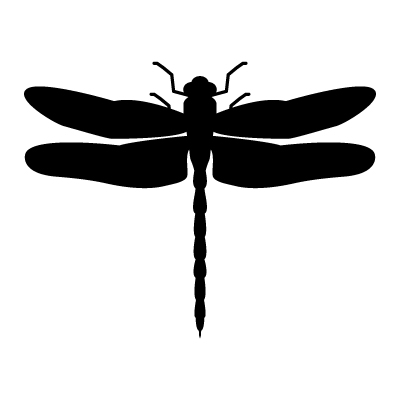 Vector Dragonfly, Vector Art, Dragonfly Stock Vector : Vectoriel.com: cliparts.co/dragonfly-vector