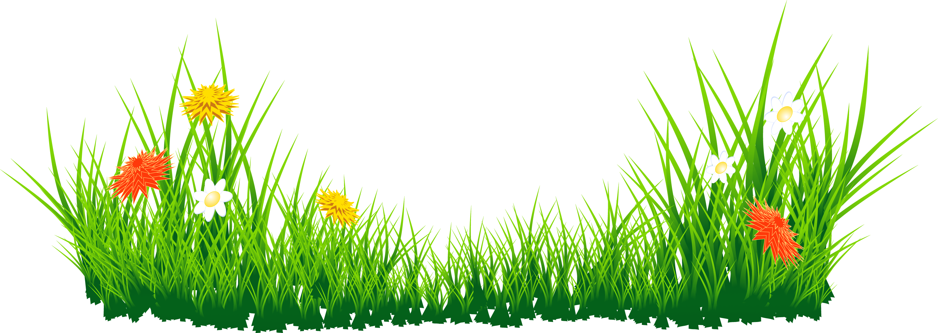 Grass border clip art for Best grasses for borders