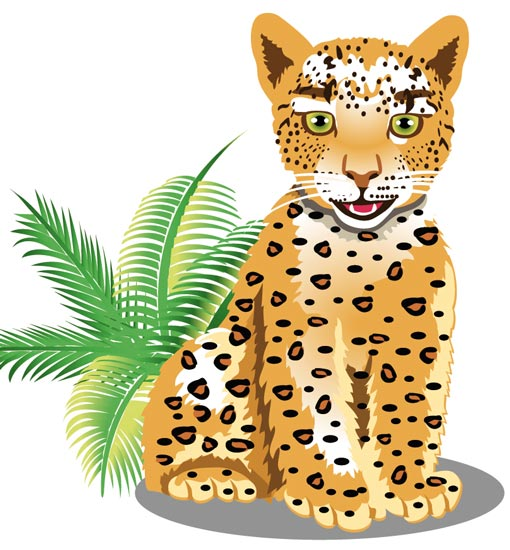 Image result for leopards cartoon