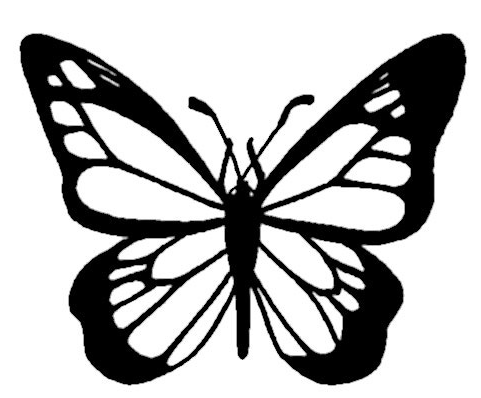 Monarch Butterfly Coloring Page amp Book