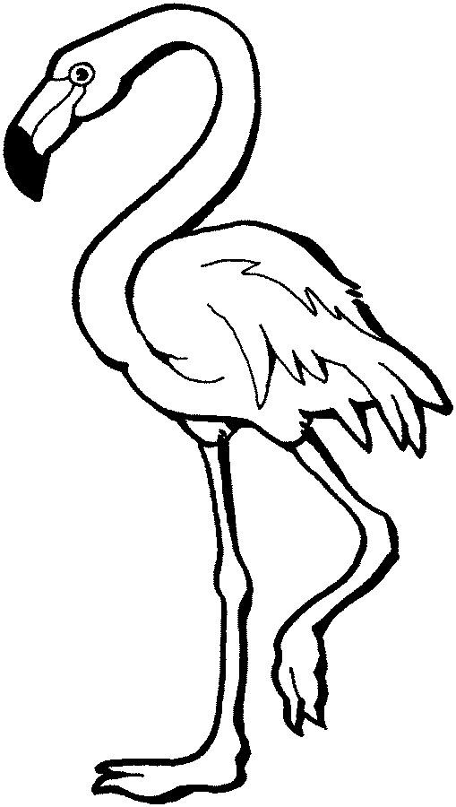 Flamingo clip art | Clipart Panda - Free Clipart Images