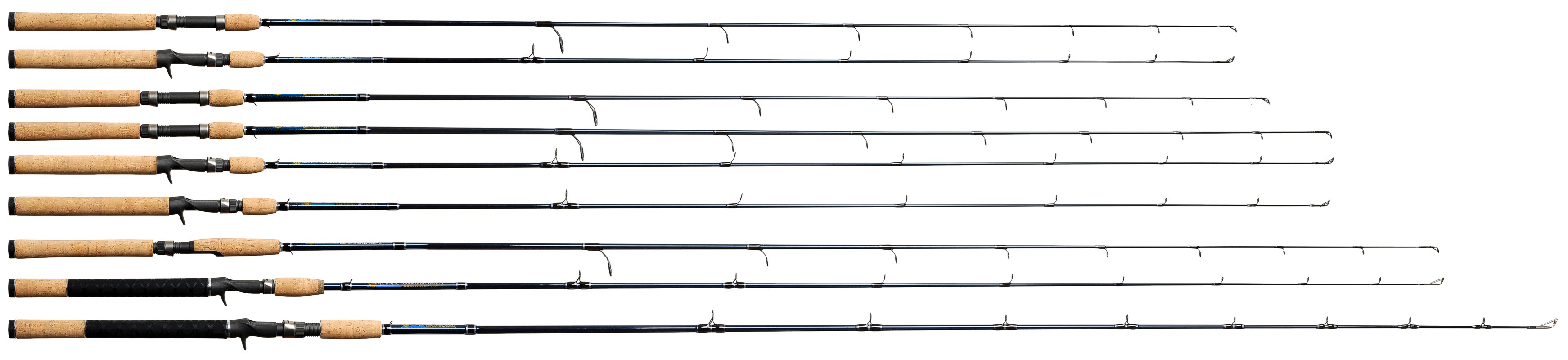 Fishing rods for Types of fishing poles