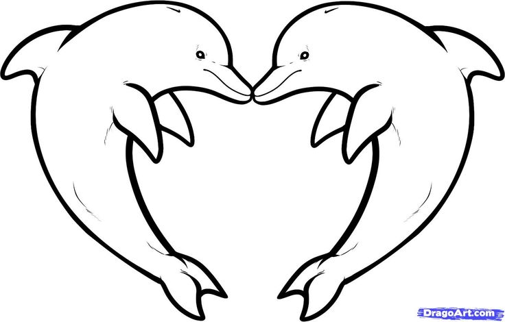Line Art Dolphin : How to draw a dolphin cliparts