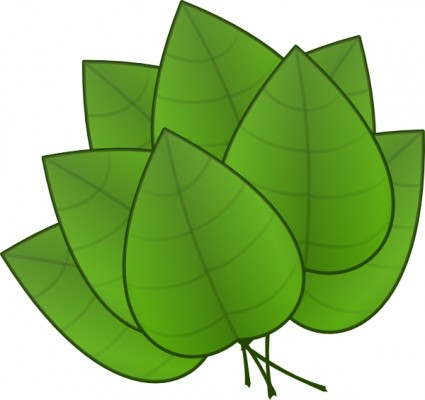 Green Plant Leaves clip art Vector clip art - Free vector for free ...