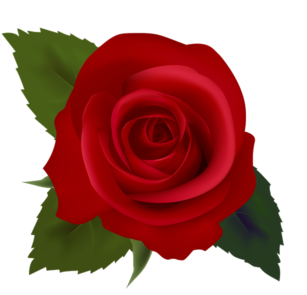 75 images of Clip Art Red Roses . You can use these free cliparts for ...