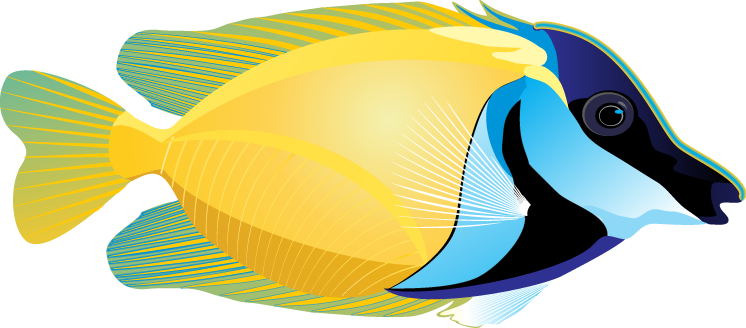 Big Fish Clipart - ClipArt Best - Cliparts.co