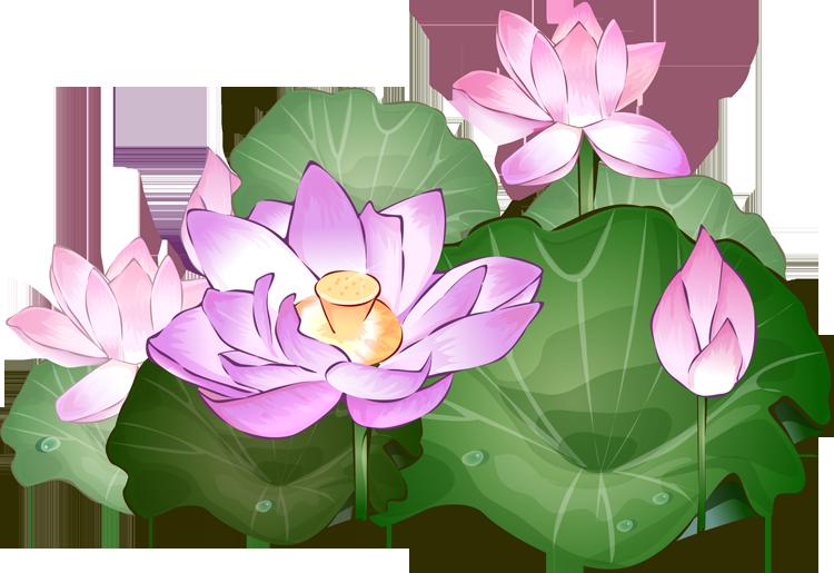 free blue lotus flower clip art - photo #33