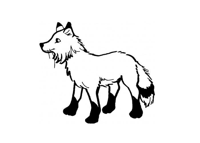 Artitc Fox Coloring Page